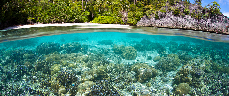 Ocean Policy Symposium | Events | School of Geography and the ...